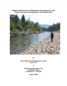 "Habitat Assessments and Restoration Prescriptions for the ""Upper and Lower Car-body Run"" of the Salmo River"