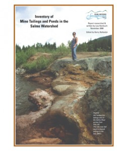 Inventory of Mine Tailings and Ponds in the Salmo Watershed