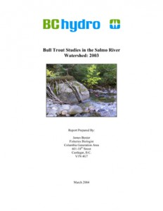 Bull Trout Studies in the Salmo River Watershed: 2003