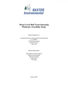 Sheep Creek Bull Trout Spawning Platforms: Feasibility Study