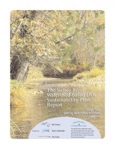 The Salmo River Watershed-based Fish Sustainability Plan Report; Stage Two: Setting Watershed Priorities