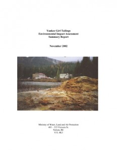 Yankee Girl Tailings Environmental Impact Assessment Summary Report