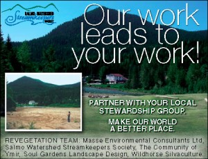 Yankee Girl Remediation Advertisement in Kootenay Business Magazine